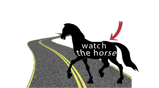 wwatch_the_horse