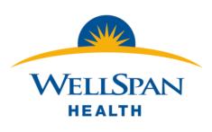 wellspan_logo