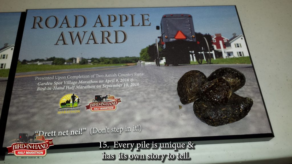 road_apple_award_story_17_slides16