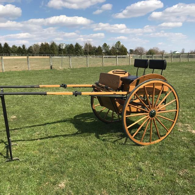 Wendy Williams_pony cart