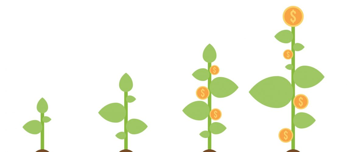 Growing plant with dollar coins vector illustration