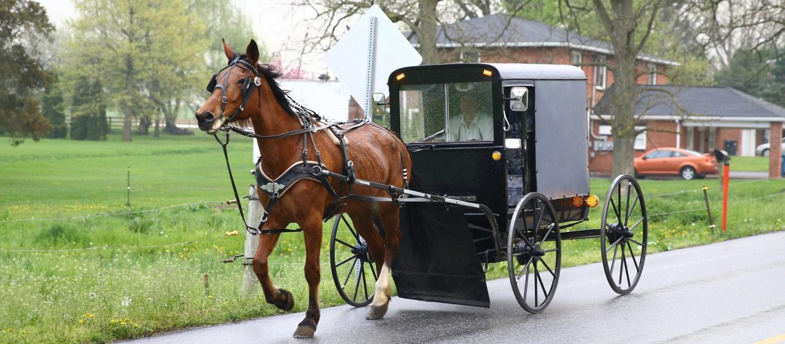 PENNSYLVANIA, USA - APRIL 30 : An Amish horse and a buggy are seen on the road in Central Pennsylvania, United States on April 30, 2017. Central Pennsylvania is home to an iconic set of plain people, the Amish. Amish people are known for their simple way of living and  refuse modern technology like electricity, central heating. They work in the fields including children, plant and harvest crops without modern farm technology. Amish women make their own long, dark-colored dresses and the men mostly grow long beards and wear hats due to their religion. Some Amish allow bicycles while others often permit the scooter instead. Farmers ride horses on their land and ride buggies in their daily lives. (Photo by Volkan Furuncu/Anadolu Agency/Getty Images)